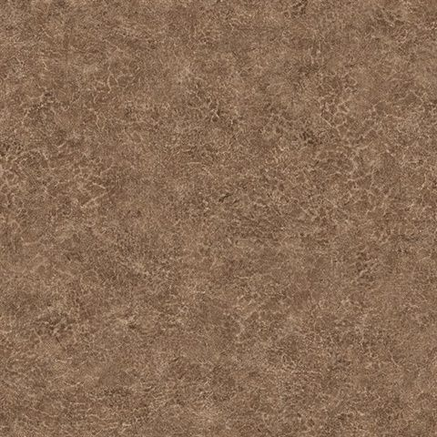 KT Exclusive Texture Gallery BV30616
