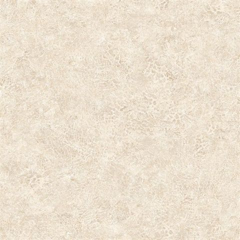 KT Exclusive Texture Gallery BV30615