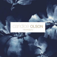 Candice Olson Tranquil.